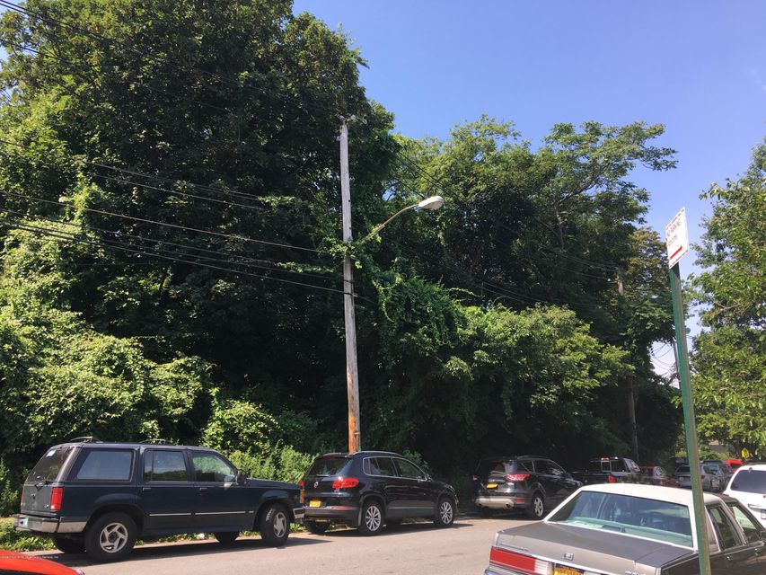 Land for Sale at 3038 Saint Marks Place Staten Island, New York 10301 United States