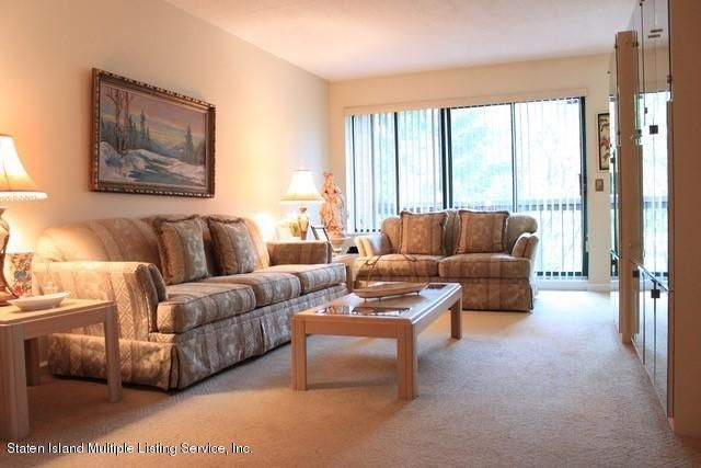 Condo 41 Wellington Court 4a  Staten Island, NY 10302, MLS-1119948-3