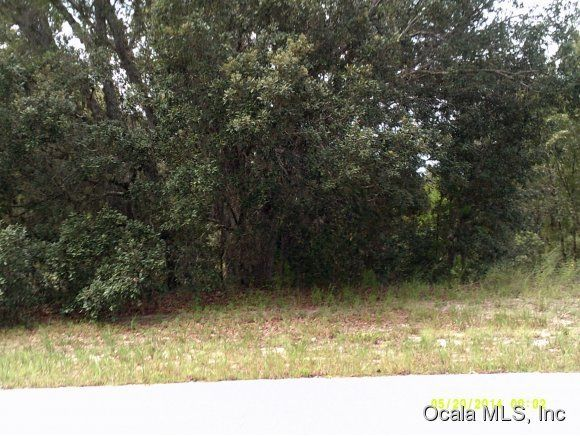 Vacant land for Sale at 0 148 SW Ocala, Florida 34473 United States