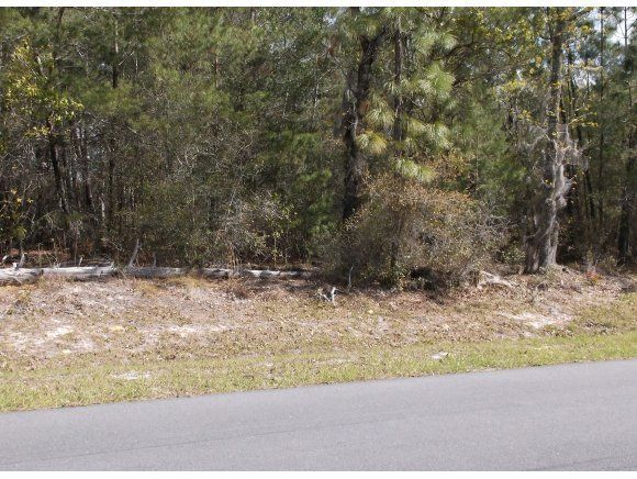 Vacant land for Sale at 0 114 SW Ocala, Florida 34473 United States