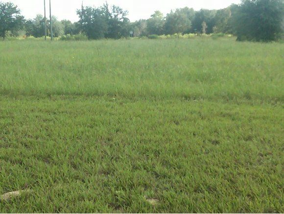 Vacant land for Sale at Address Not Available Ocala, Florida 34473 United States