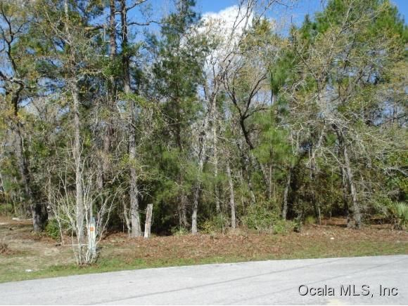 Vacant land for Sale at 0 Oak Run Ocala, Florida 34472 United States