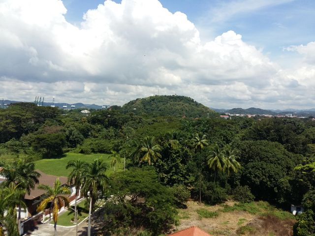 PANAMA VIP10, S.A. Apartamento en Alquiler en Amador en Panama Código: 17-5663 No.4