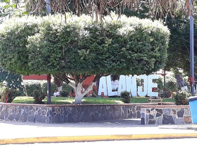 PANAMA VIP10, S.A. Apartamento en Venta en Remedio en Remedios Código: 18-708 No.2