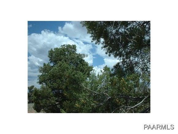 5294 Indian Meadows Road Williams, AZ 86046 - MLS #: 970031