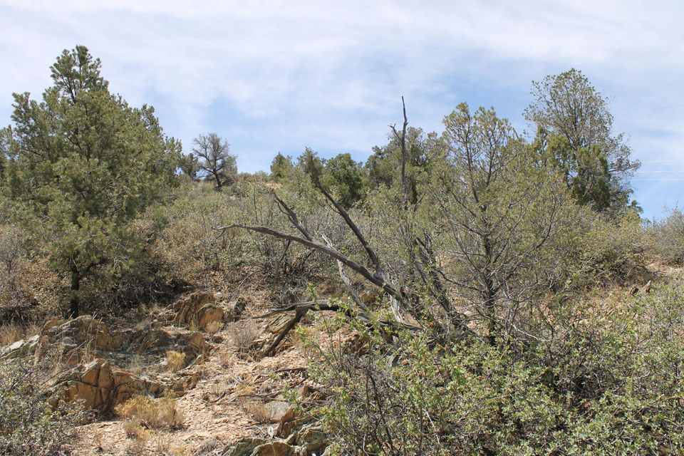 5425 W Edith Prescott, AZ 86305 - MLS #: 978968