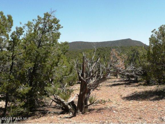 1024 Sierra Verde Ranch Seligman, AZ 86337 - MLS #: 985117