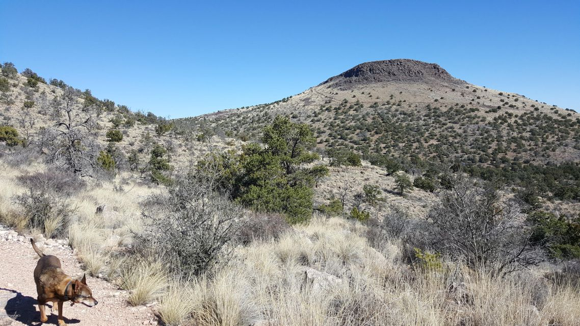 3501 N Geiler Road Chino Valley, AZ 86323 - MLS #: 992784