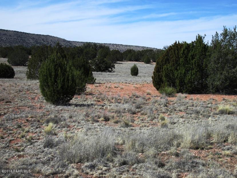 53780 N Cedar Drive Seligman, AZ 86337 - MLS #: 993278