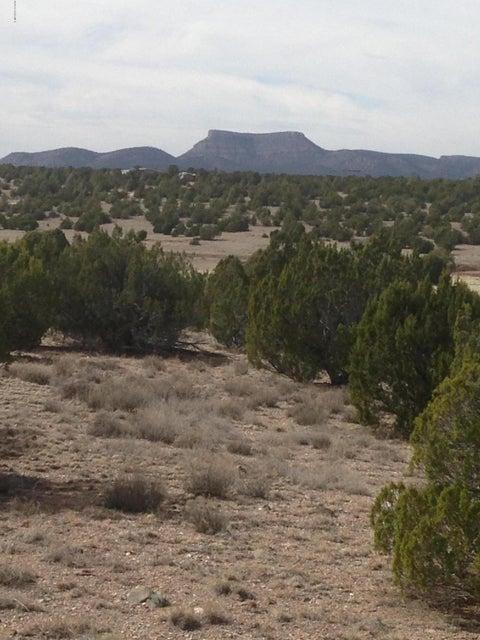 607 Younger Trail Seligman, AZ 86337 - MLS #: 993131