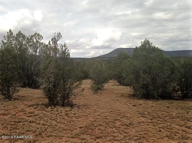 187 W Fort Rock Road Seligman, AZ 86337 - MLS #: 999348