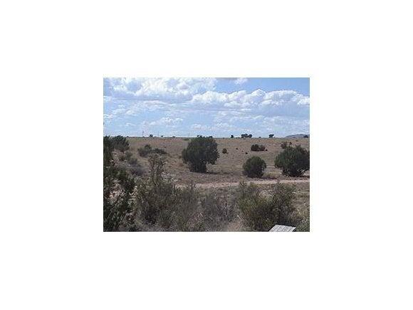 320 E Alpine Drive Paulden, AZ 86334 - MLS #: 999786