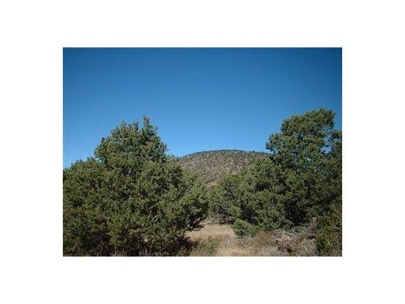 1343 E Sagebrush Road Williams, AZ 86046 - MLS #: 1002608