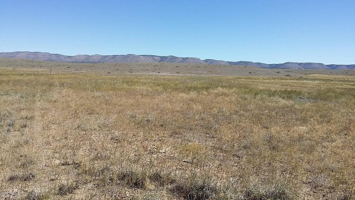 0000 Duane Lane Paulden, AZ 86334 - MLS #: 1003547