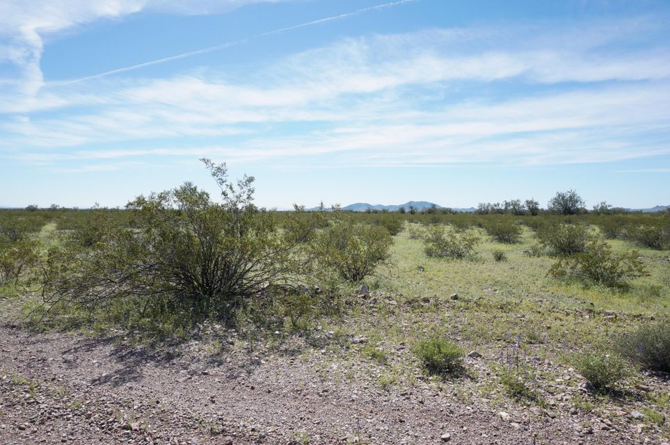 000 Salome Avenue Tonopah, AZ 85354 - MLS #: 1002196