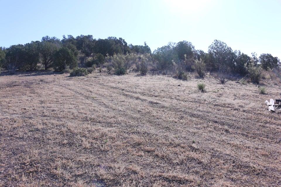 00 N Spruce Chino Valley, AZ 86323 - MLS #: 1003904