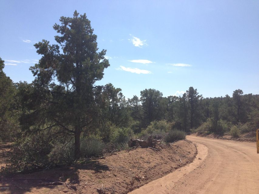 Lot 165 Trap Springs,Hackberry,Arizona,86434,Ranch/agricultural,Trap Springs,1004187
