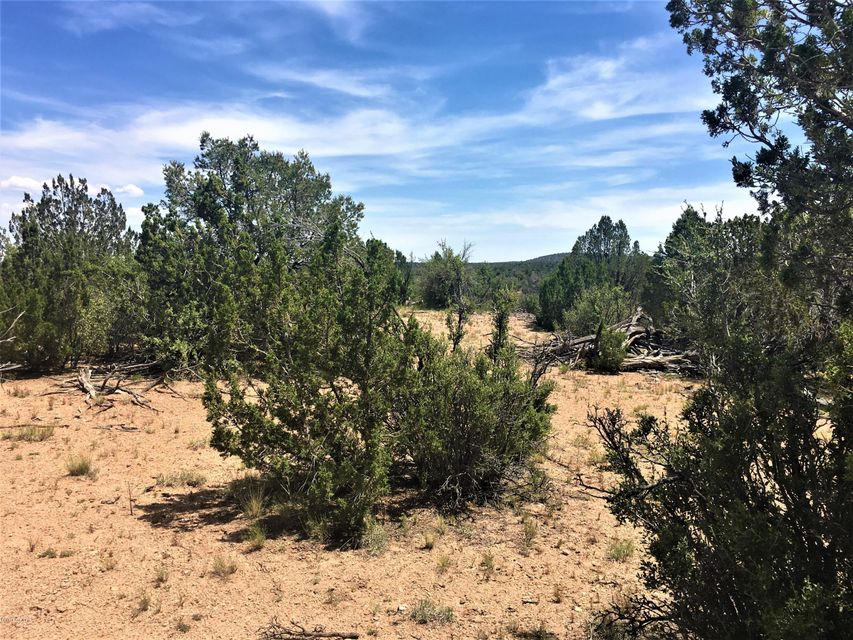 404 Off Of Ranch Rd,Ash Fork,Arizona,86320,1 Bedroom Bedrooms,1 BathroomBathrooms,Site built single family,Off Of Ranch Rd,1004401