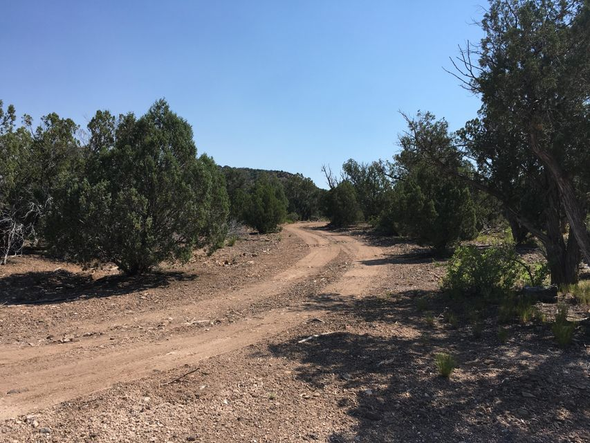 Lot 23 Willow Creek Ranch,Kingman,Arizona,86401,3 Bedrooms Bedrooms,2 BathroomsBathrooms,Mfg/mobile,Willow Creek Ranch,1004499