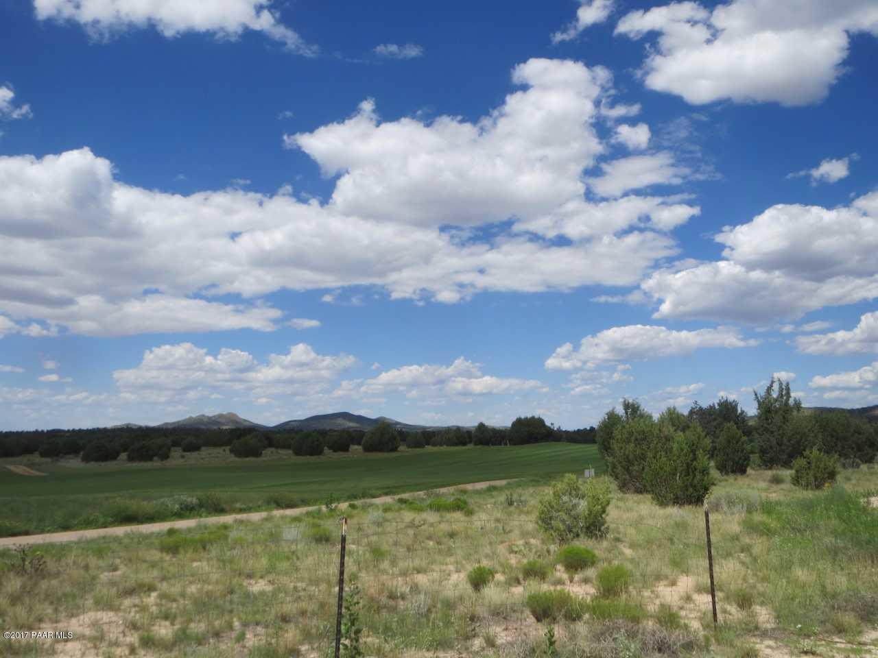 15040 N Forever View Lane Prescott, AZ 86305 - MLS #: 1003873