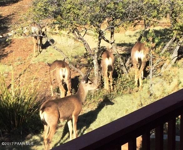 3320 E Morning Mist Circle Prescott, AZ 86303 - MLS #: 1005779