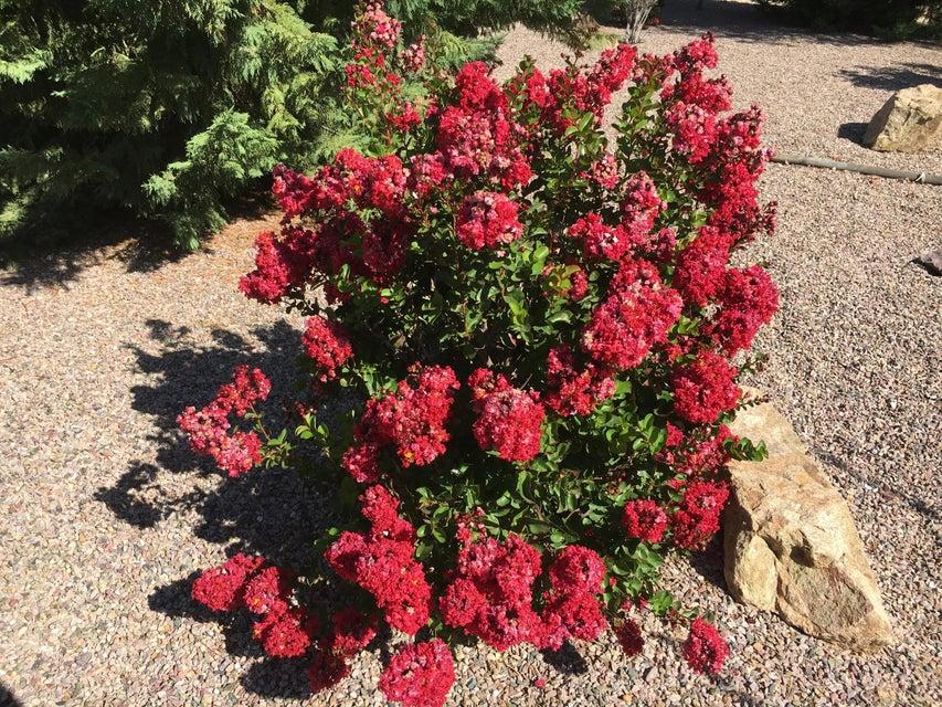 2120 W Road 2 North Chino Valley, AZ 86323 - MLS #: 1005796