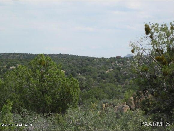 0 Calle Diamante Skull Valley, AZ 86338 - MLS #: 1006920