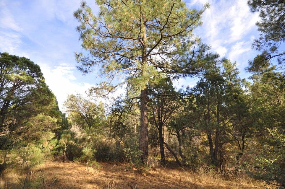 3180 W Pine Lakes Prescott, AZ 86305 - MLS #: 1007723
