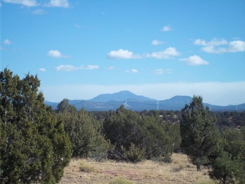 10142 S Sun Valley Trail Williams, AZ 86046 - MLS #: 1007767