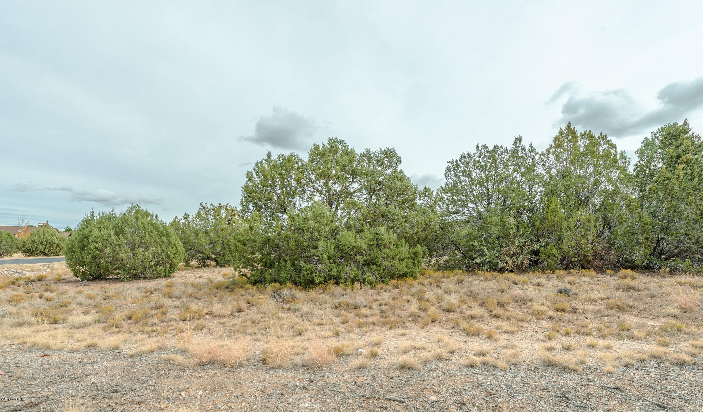 14585 N Double Adobe Road Prescott, AZ 86305 - MLS #: 1007980