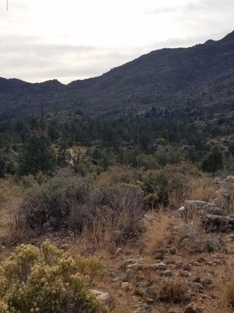 0 W Watering Hole Way Peeples Valley, AZ 86332 - MLS #: 1008030