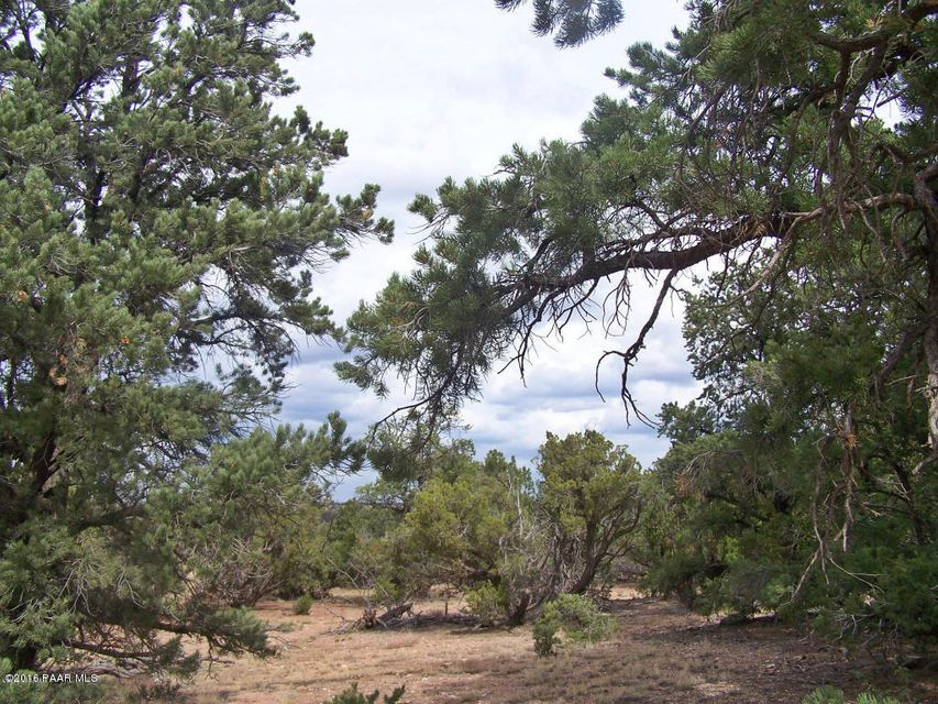 8553 N S Rim Ranch Road Williams, AZ 86046 - MLS #: 1008310