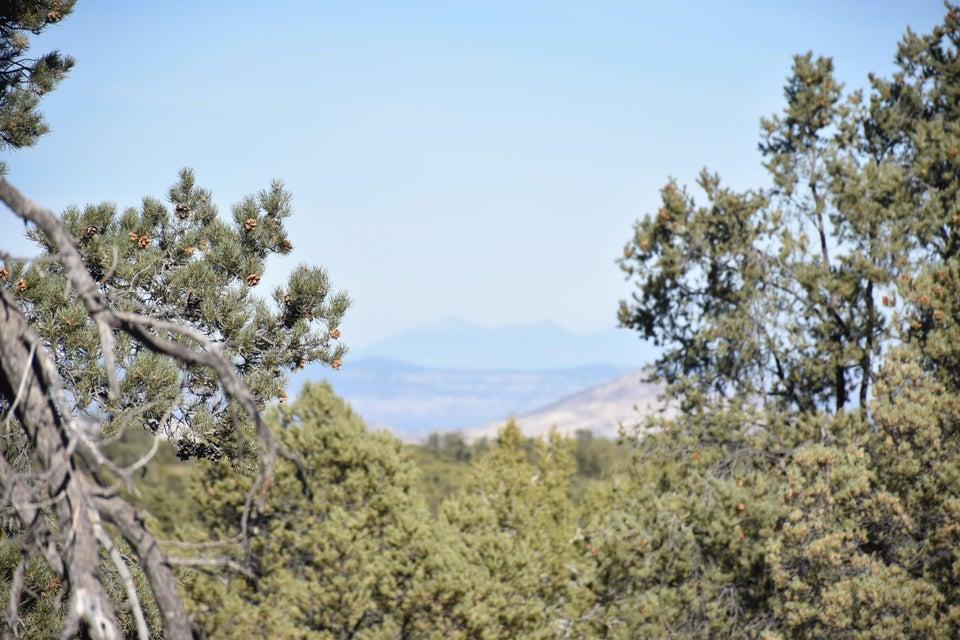 0 W Road 2 South Prescott, AZ 86305 - MLS #: 1009869