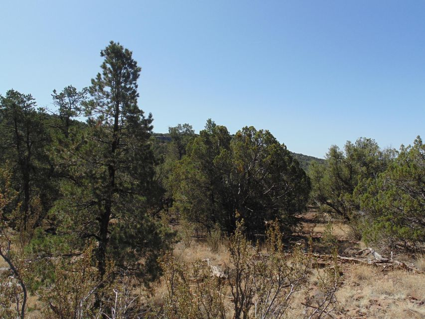 7 Shadow Rock Ranch Seligman, AZ 86337 - MLS #: 1011216