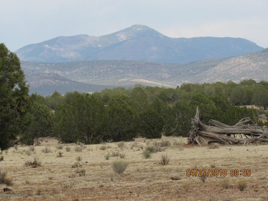 313 Poppy Road Ash Fork, AZ 86320 - MLS #: 1011820