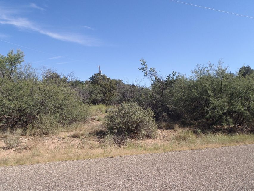 19856 E Antelope Road Mayer, AZ 86333 - MLS #: 1011914