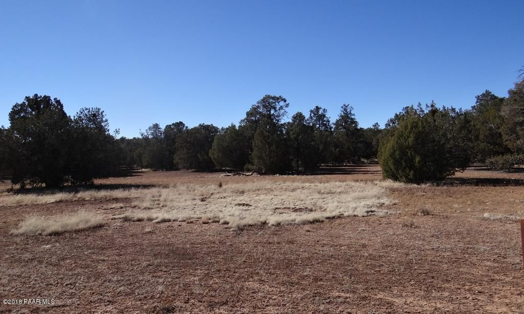 43701 N Moonshine Road Seligman, AZ 86337 - MLS #: 1003570