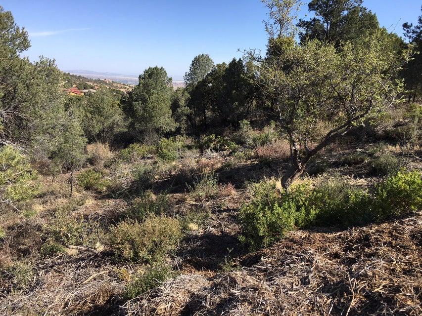3191 Rainbow Ridge Drive Prescott, AZ 86303 - MLS #: 1012035