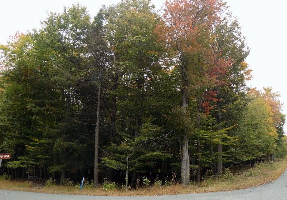 19 Deer Valley Rd Lake Ariel, PA 18436 - MLS #: 15-573