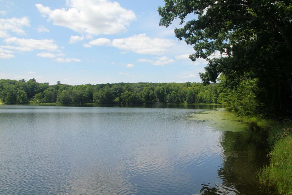 Cochecton turnpike tyler hill pa 18469 us wayne county for Lake wallenpaupack fishing report