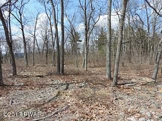 Lot 40 Blue Heron Way Hawley, PA 18426 - MLS #: 17-822