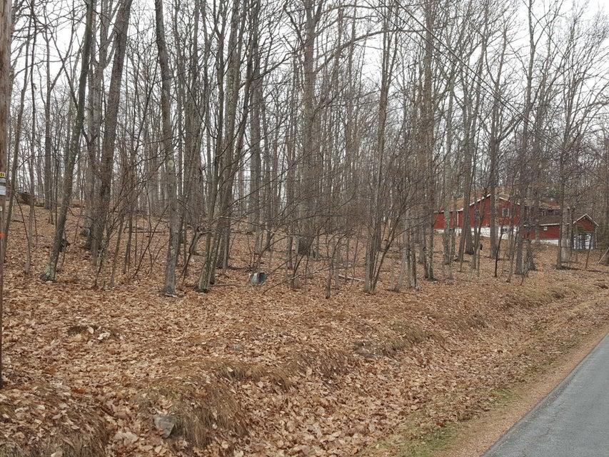 195 Forest Ridge Dr Hawley, PA 18428 - MLS #: 17-1310