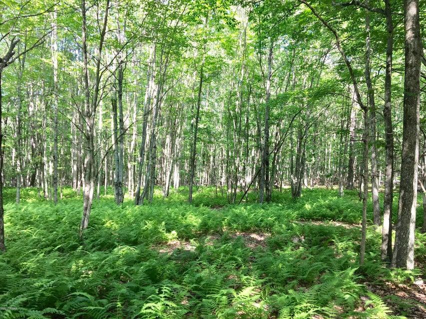 46 Deer Run Rd Hawley, PA 18428 - MLS #: 17-1474