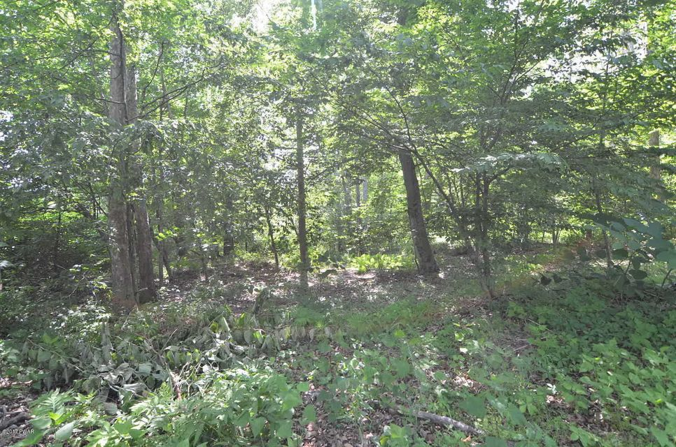 1442 equinunk creek road Equinunk, PA 18417 - MLS #: 17-2870