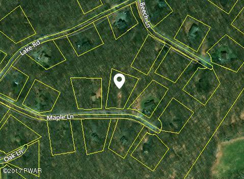 29 Maple Ln Lake Ariel, PA 18436 - MLS #: 17-557