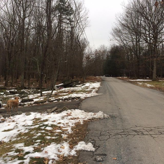 137 Buck Run Drive Milford, PA 18337 - MLS #: 17-5319