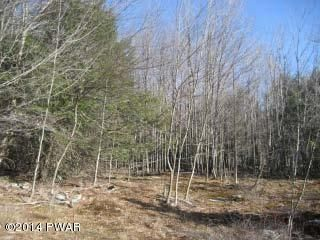 Lot 1 Charphil Dr Newfoundland, PA 18445 - MLS #: 18-336