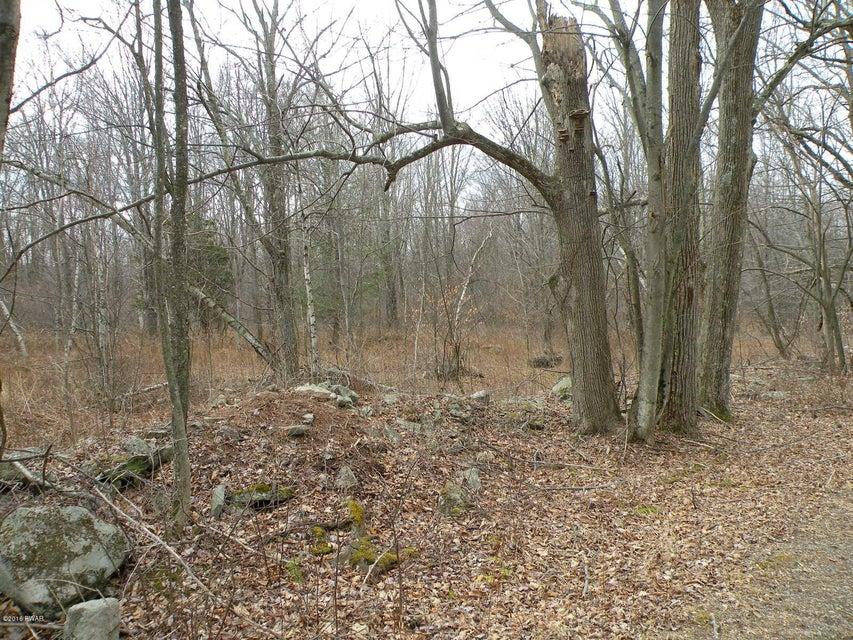 Lot 2 Zion Woods Sterling, PA 18463 - MLS #: 18-370