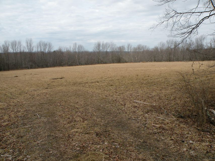Lot 3 Zion Woods Sterling, PA 18463 - MLS #: 18-371
