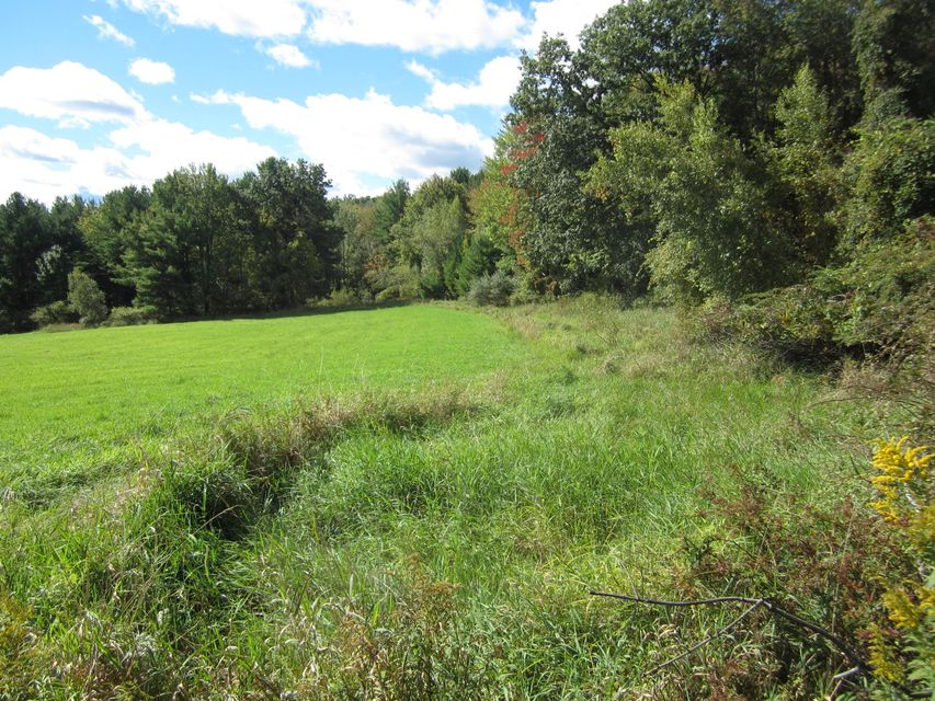 Bristol Dr Honesdale, PA 18431 - MLS #: 18-510